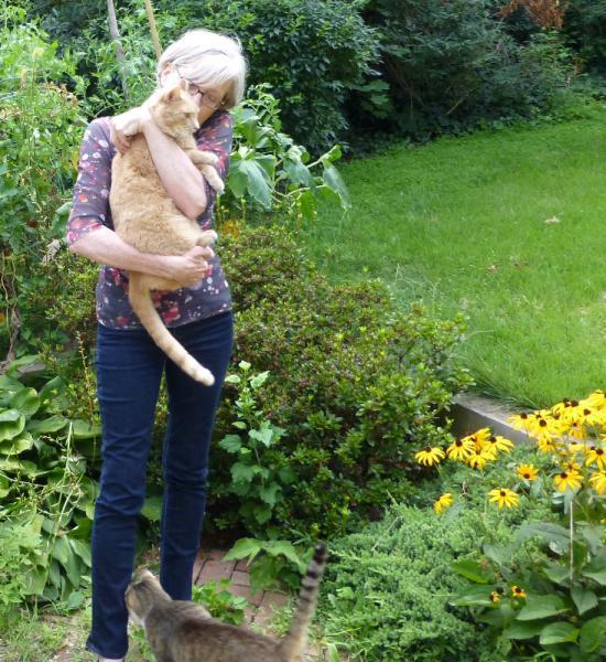 Vivian Swift Gardens Of Awe And Folly Octavia Books New