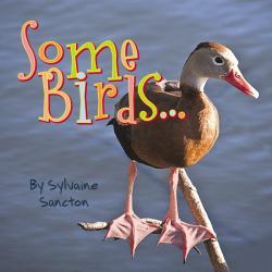 Some Birds by Sylvaine Sancton
